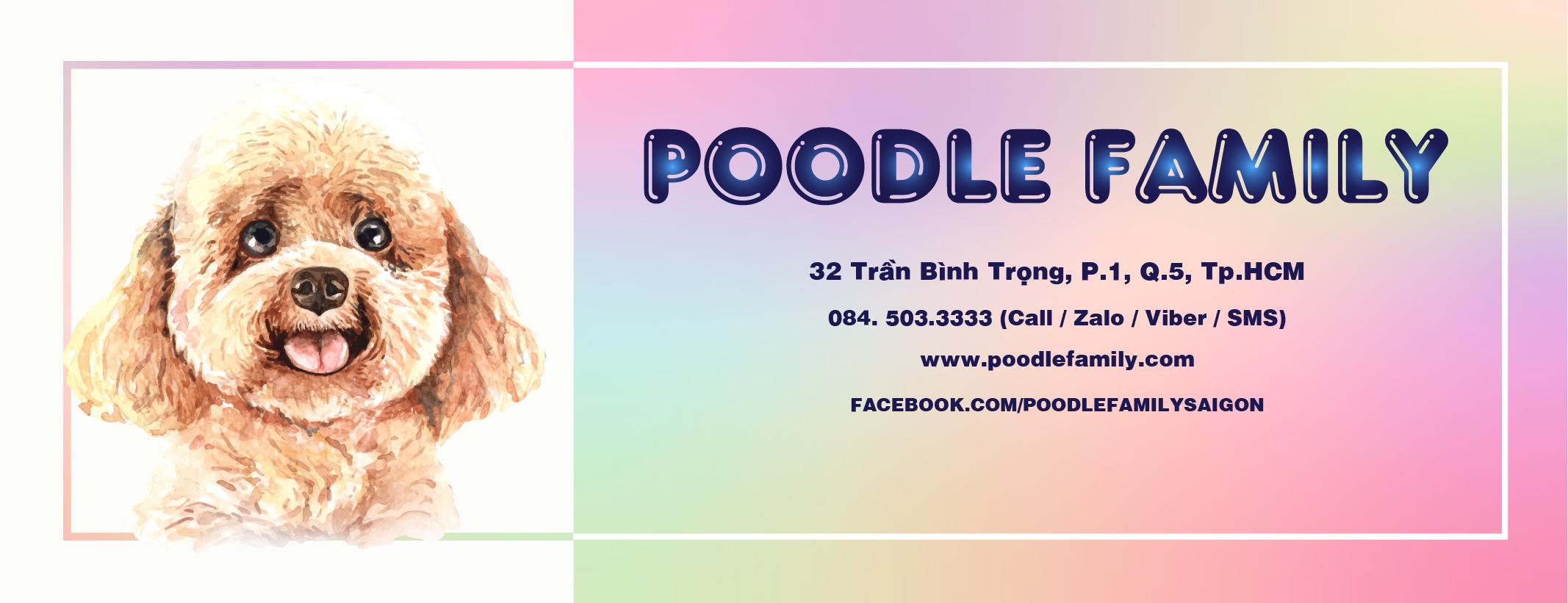 banner poodle