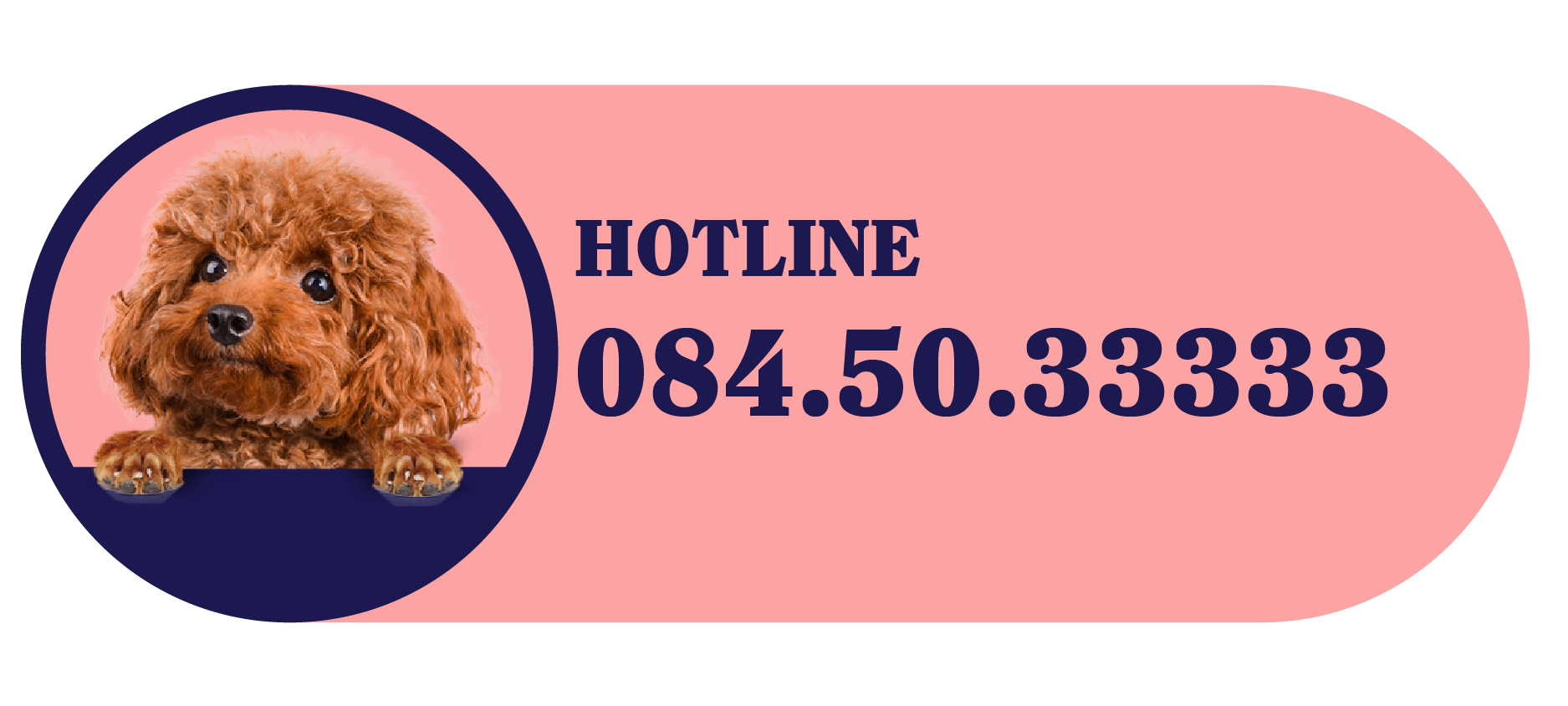 button số hotline